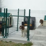 Dog kennels at holiday rental house in Normandy, France