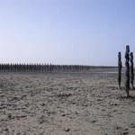 Sand flats St Martin de Brehal Normandy